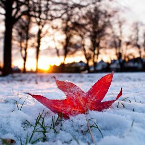 秋冬季预防白癜风需要留心的问题都会有哪些呢